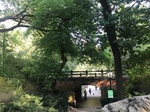 profesorjonk-nueva-york-central-park-relatos-de-viajes_6
